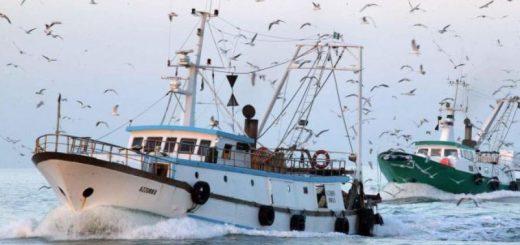 pescherecci tunisia