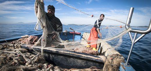 pesca pescatori