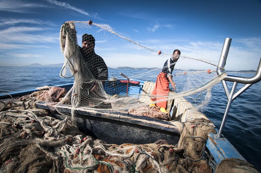 Pesca, 7 bandi e 11.5 milioni di euro per promuovere il settore in Sicilia