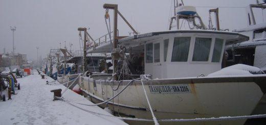 burian pescherecci pesca