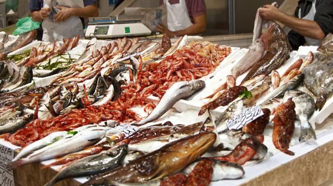 """Seminario: """"Sicilia Seafood: Qualità, Marketing e Valore Aggiunto"""". Domani, 3 luglio, a Palazzo dei Normanni"""