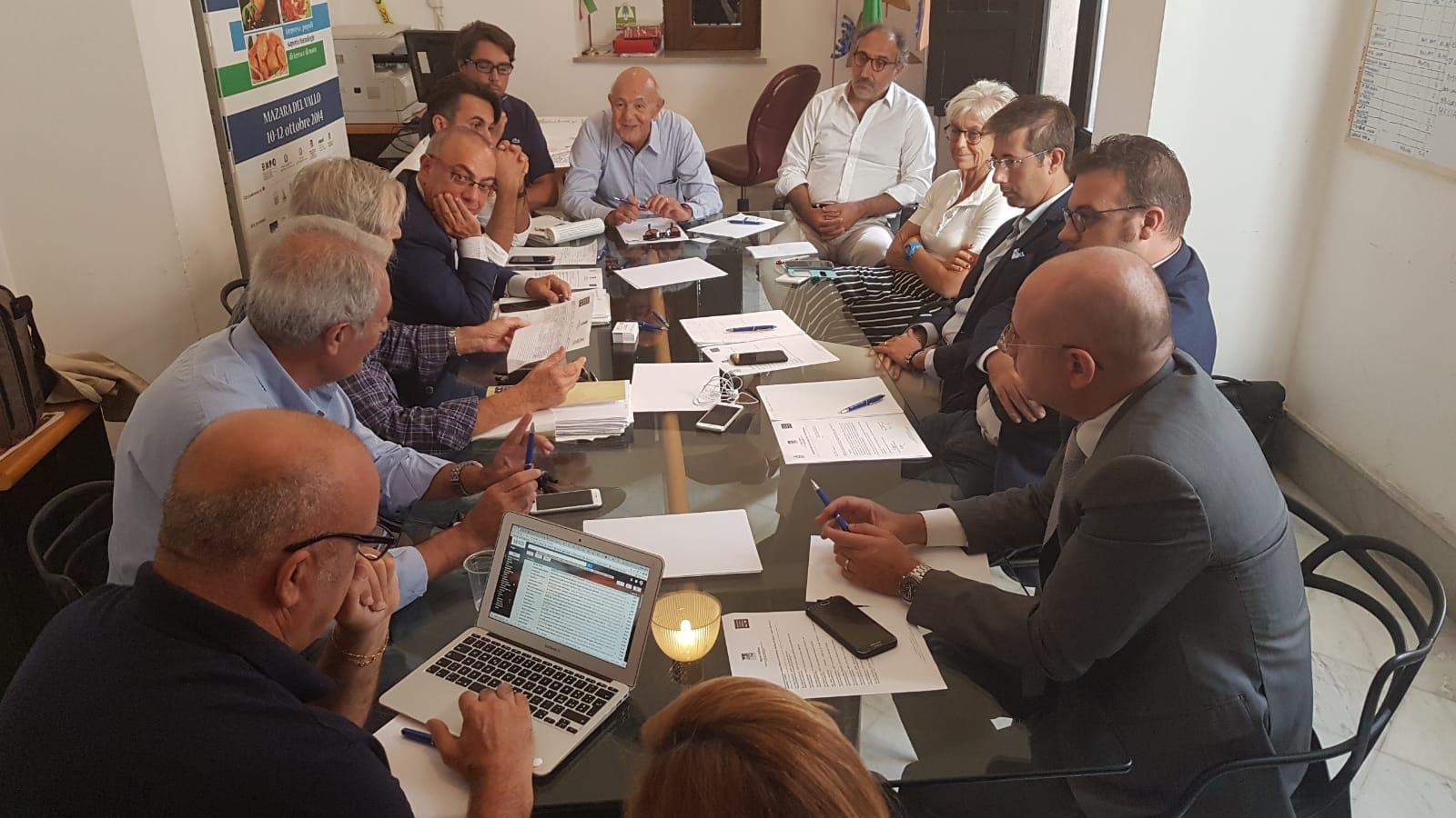 Riunione del gruppo RS&T dell'Osservatorio della Pesca del Mediterraneo