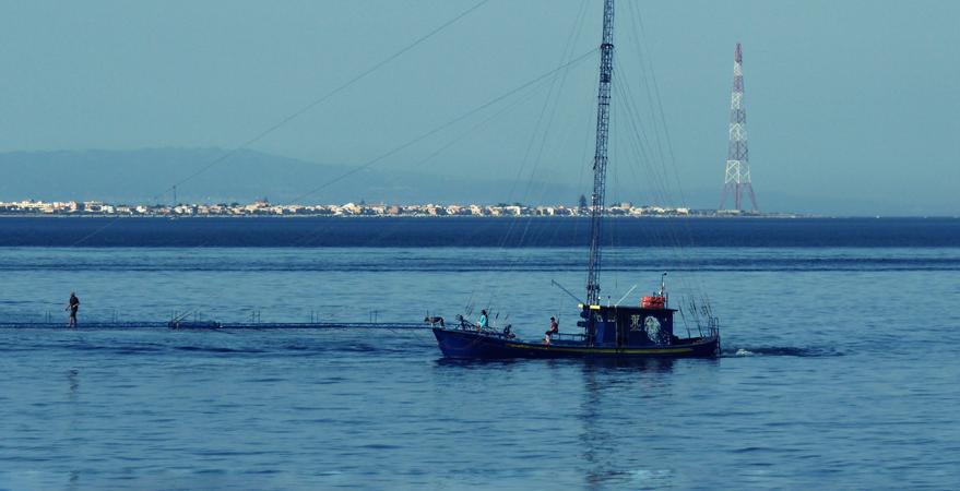 Pesca: Greenpeace, fuori controllo nello stretto di Sicilia