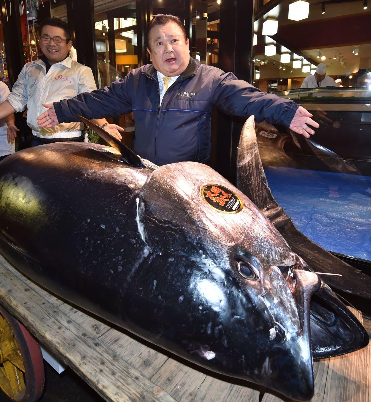 Giappone: asta record al mercato del pesce, big del sushi paga 2,7 milioni di euro per un tonno