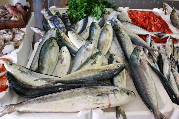 """""""Il capone, un pesce stagionale tutto da scoprire"""" a Marettimo e Levanzo"""