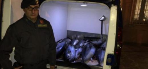 sequestro tonno rosso, finanza
